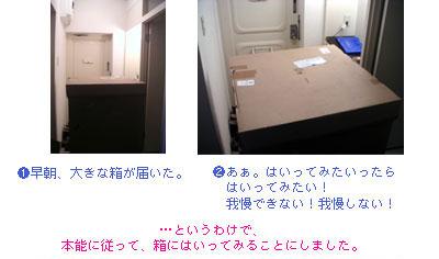 hakonihairu1.jpg