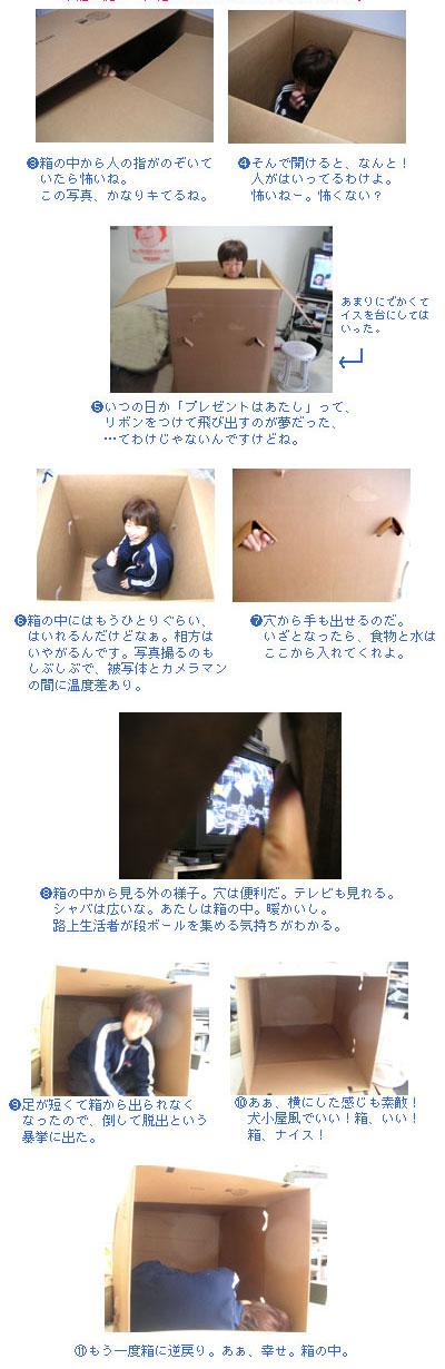 hakonihairu2.jpg